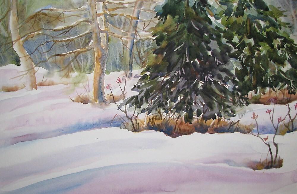Blue spruce by ChitoGonzaga