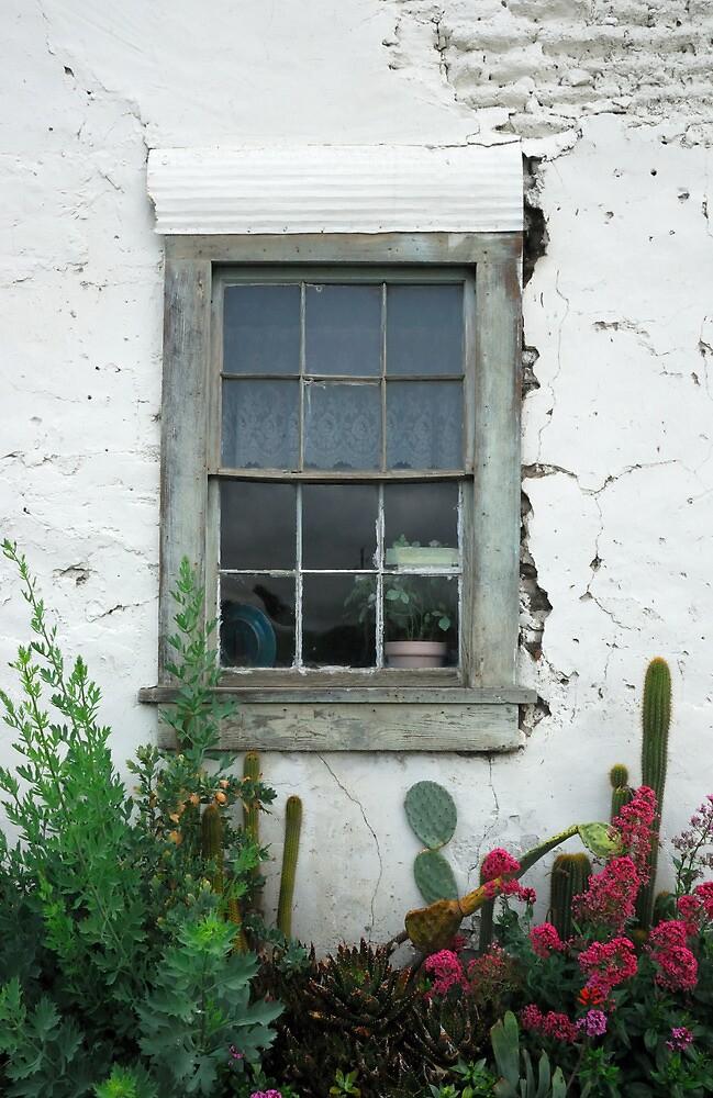 Window, San Juan Bautista by Cathy P. Austin