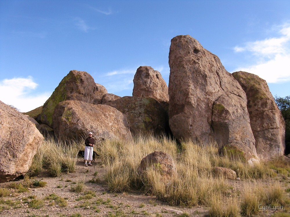 City of Rocks, New Mexico by CynLynn
