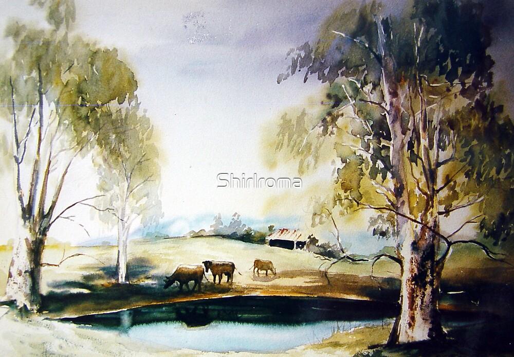 Samford Dam  Australian Landscape by Shirlroma