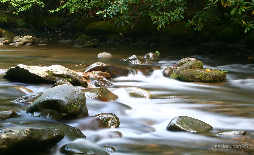 quiet stream by mariosusan95