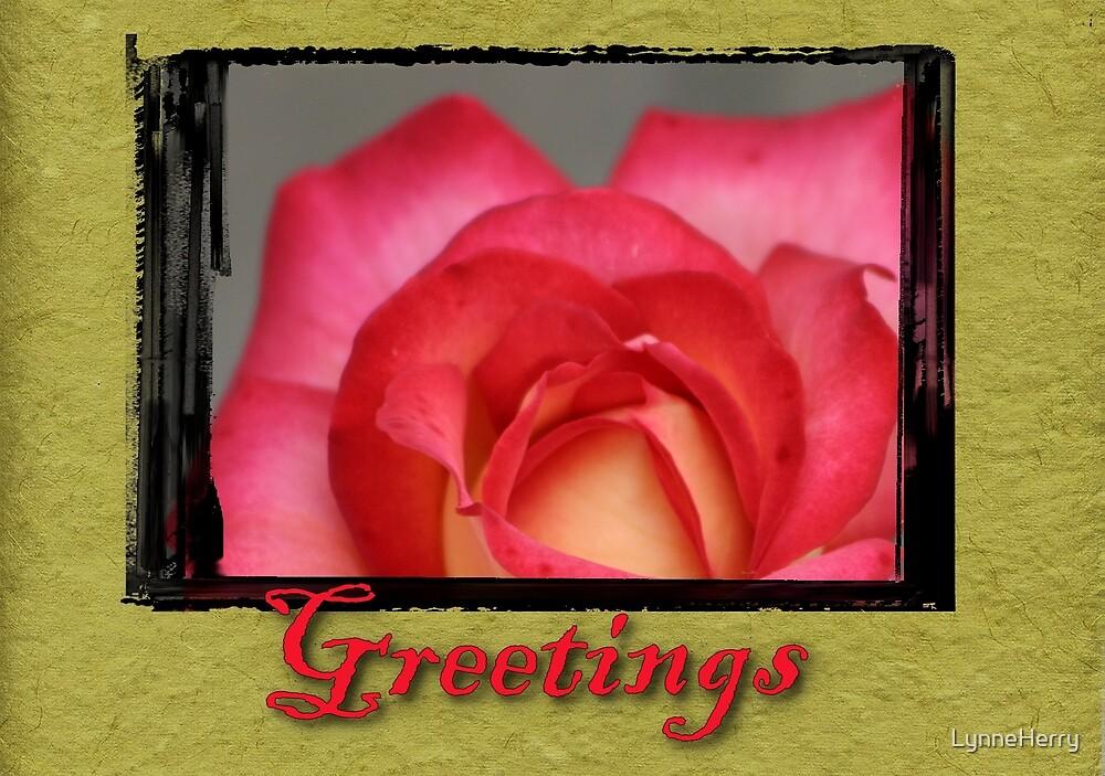 Rose Card by LynneHerry