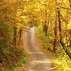 The Autumn Avenue by lorilee