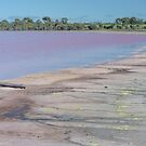 Pink Lake by Werner Padarin