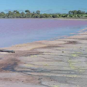 Pink Lake by fotoWerner