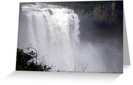 The Voice of the Falls by Elaine Bawden