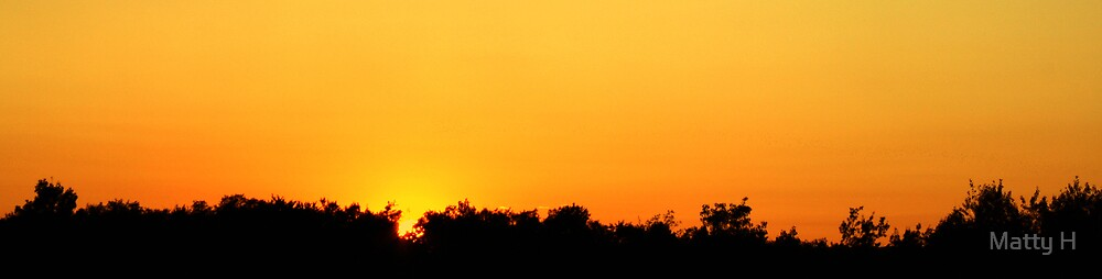 Wide Angle Sunset Over Trees by Matthew Hutzell