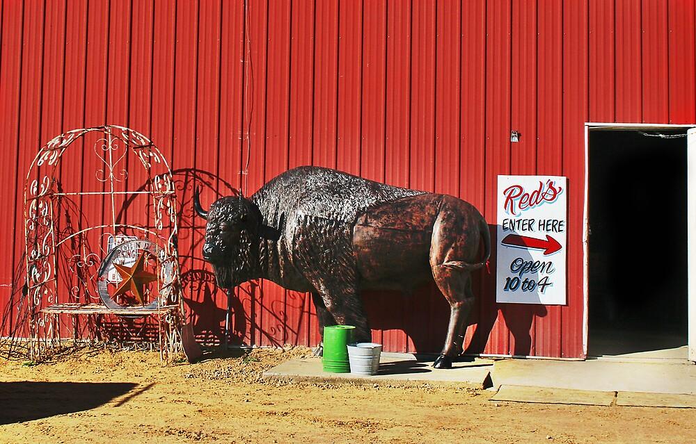 No Bull Here by Nadya Johnson
