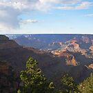 Grand Canyon - Arizona by Julia Washburn