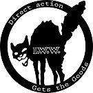 Direct Action Gets The Goods - Industrial Workers of the World (I.W.W.) by dru1138