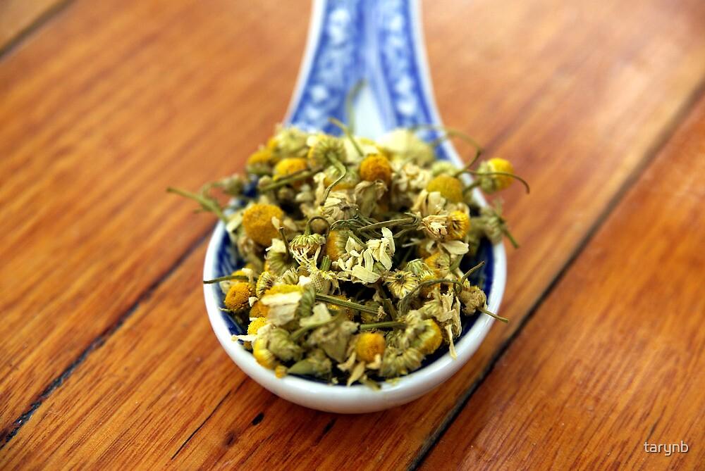 Chammomile Tea in the Sun by tarynb