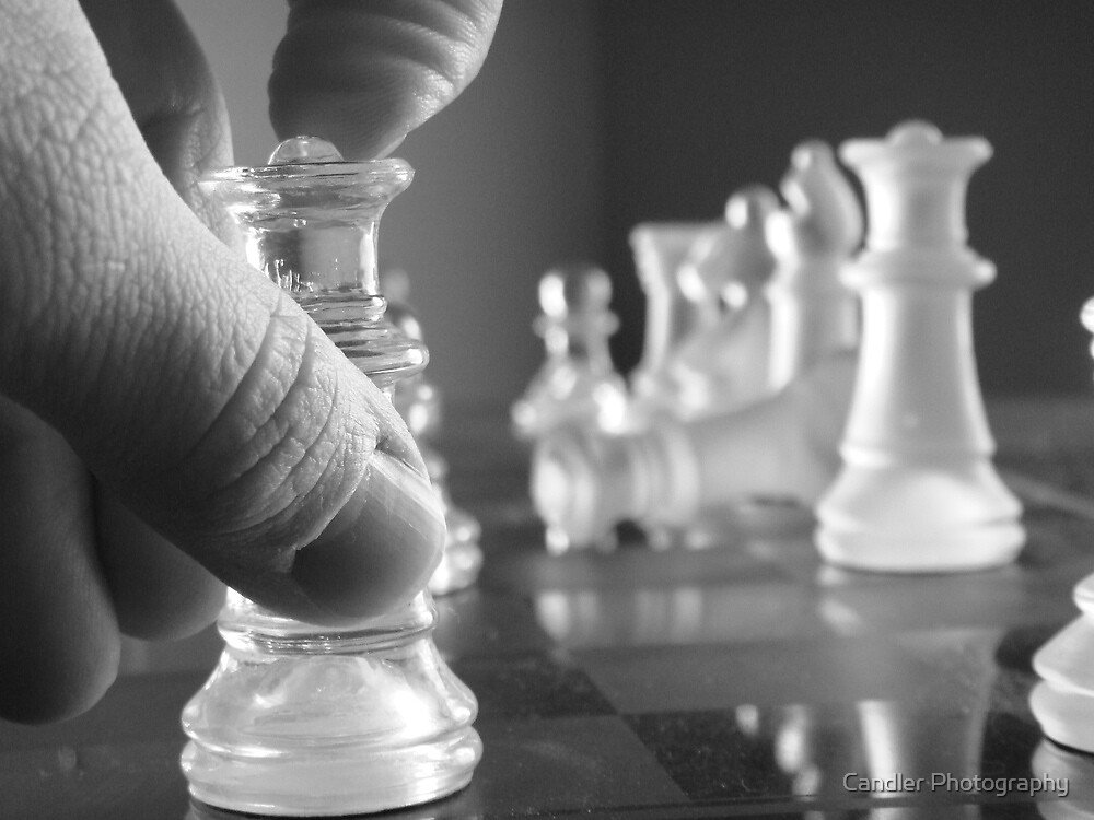 Checkmate!! by Candler Photography
