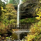 Silver Falls clad in gold by Marita Sutherlin