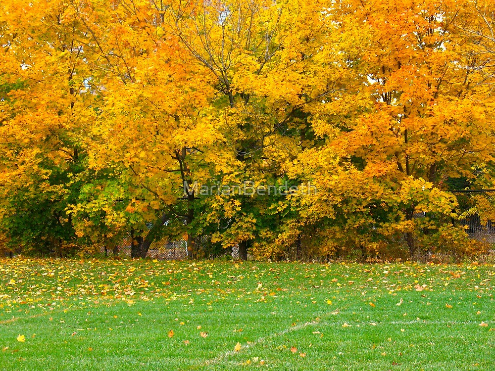The Warmth of Autumn Leaves by MarianBendeth