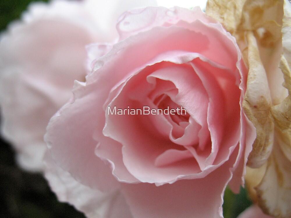 Gypsy Rose Lee by MarianBendeth