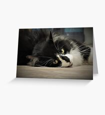 Sultry Greeting Card
