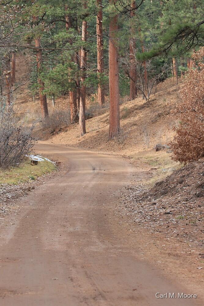Buelah Park Road by Carl M. Moore