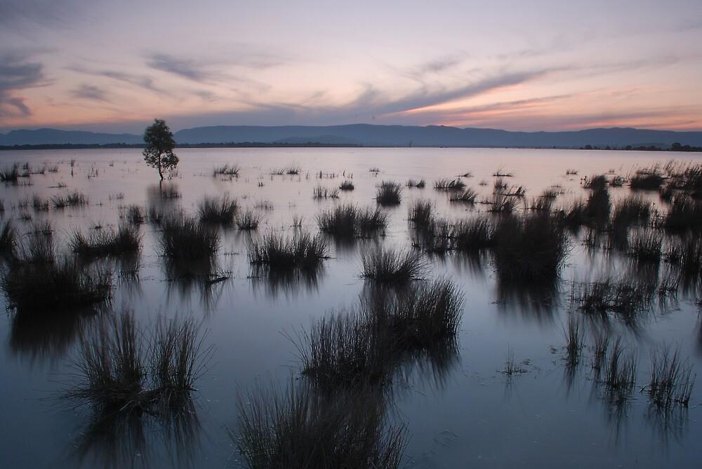 Lake Londsdale by DanielTMiller