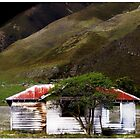 Empty Old Hut ... by Angelika  Vogel