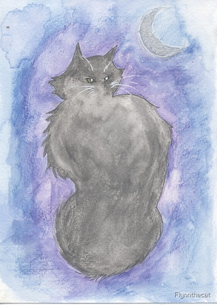 Midnight Cat by Flynnthecat