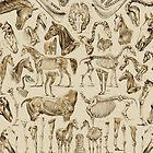 Horse Anatomy (tan print) by adamcampen