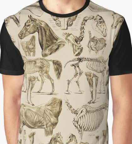 Horse Anatomy (tan print) Graphic T-Shirt