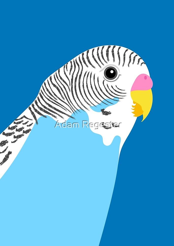Blue Budgie Bird Portrait by Adam Regester