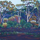First Light Hampton Hill Station, West Australia by robynart