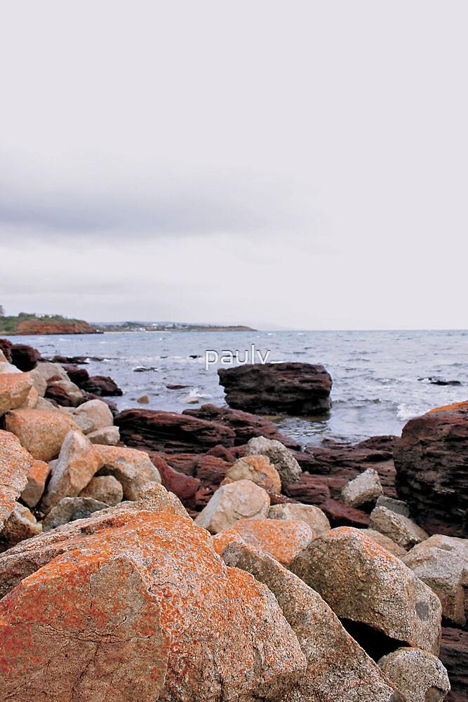 pic of waters edge by paulv