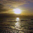 Sun and Sea by ienemien