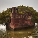 Shipwreck at Wentworth Point by Michael Matthews