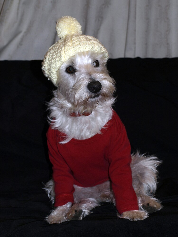Bella tries a beanie by Pascal and Isabella Inard