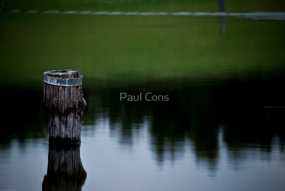 Shallow Water by Paul Cons