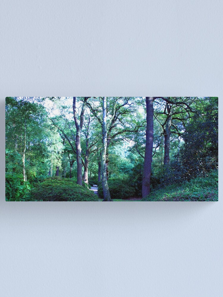 Alternate view of Isabella Plantation Canvas Print