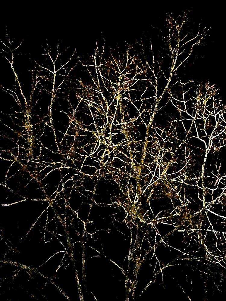 Spasam Branches by AspectJones