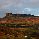 The Sgurr by Jeanie