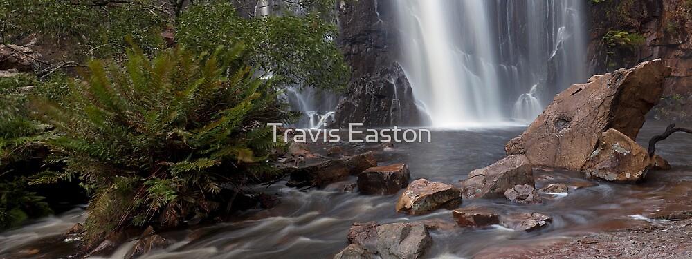 MacKenzie Falls by Travis Easton