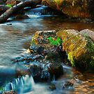 Willow River by Gypsykiss