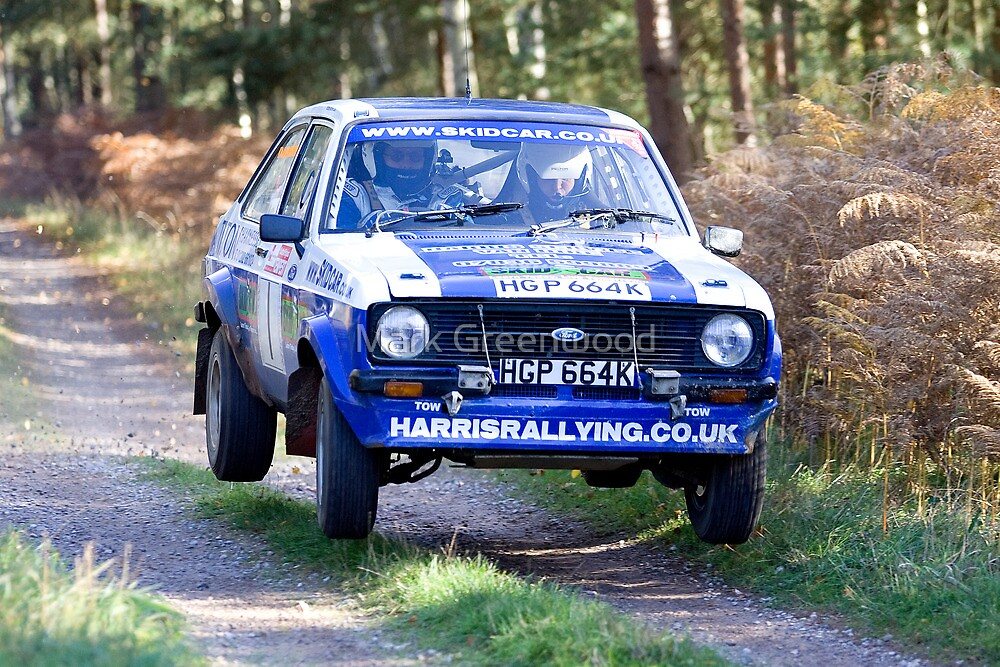 Rally Escort Air by Mark Greenwood