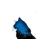 Galaxy Katze von Ash Tomb