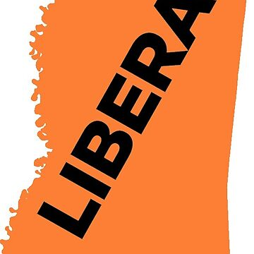 Liberal Mississippi - orange by wokesouth