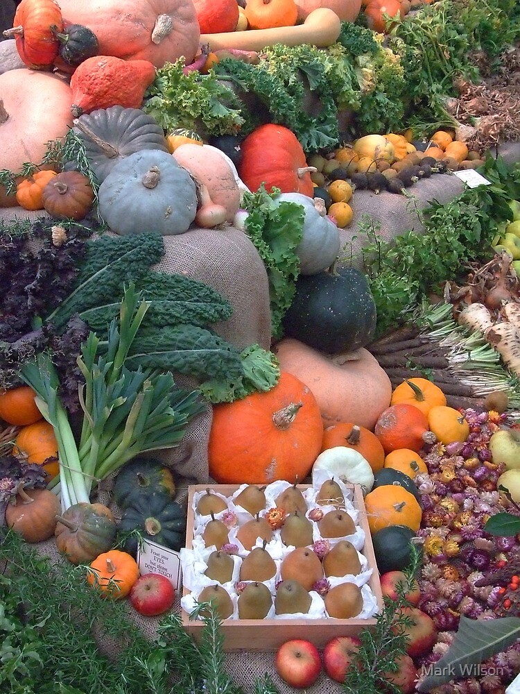 Heligan Harvest Display 2009 by Mark Wilson