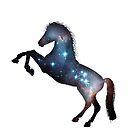 Galaxy Pferd von Ash Tomb