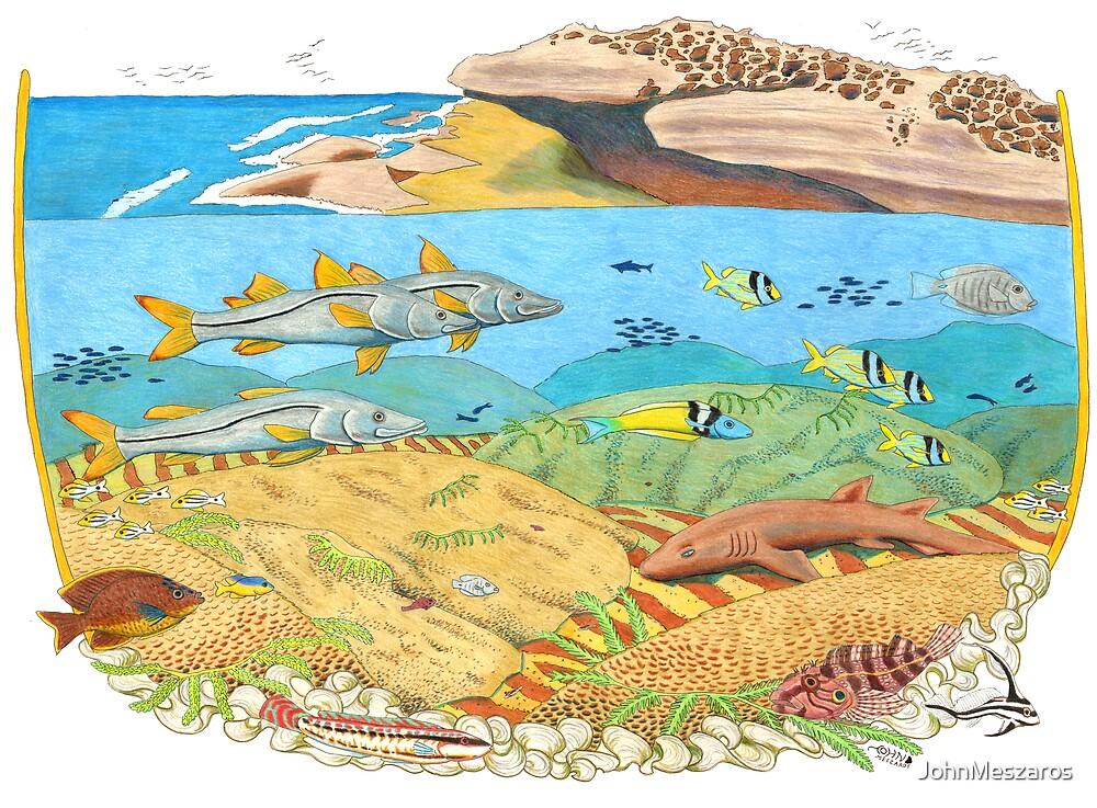 Worm Reef by JohnMeszaros