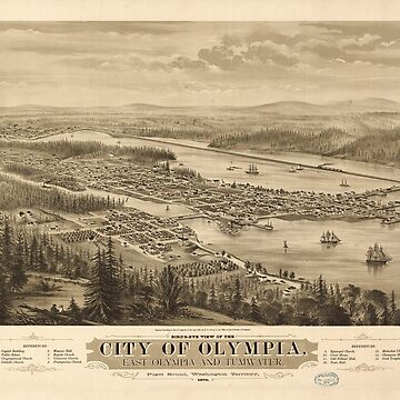 Birdy's Eye View of Olympia, East Olympia and Tumwater, Puget Sound, Washington State (1879) by allhistory