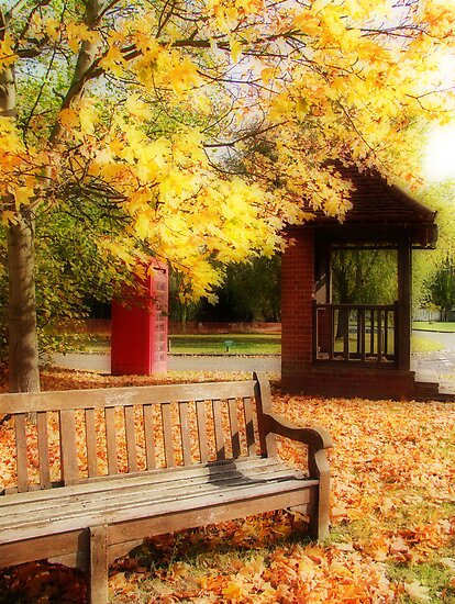 The Village Green  by Colin  Williams Photography