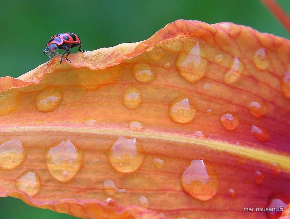 a bugs life by mariosusan95