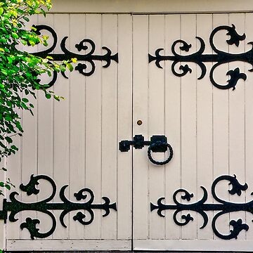White Door by Photograph2u