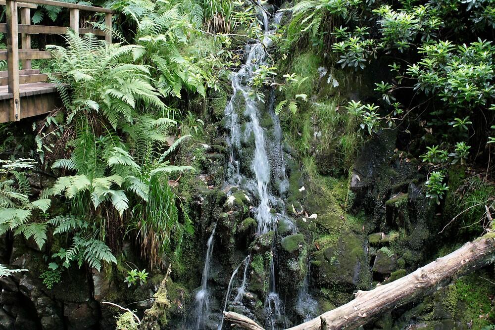 Waterfall in Eskdale, Cumbria by biroballpoint