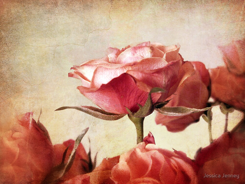 Romantic Roses by Jessica Jenney